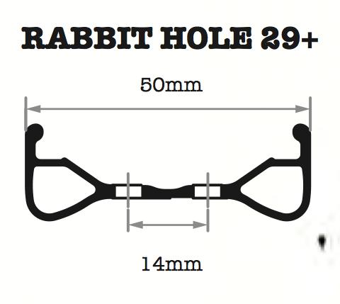 rabbithole_Dim